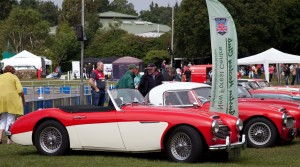 Austin Healey Club display