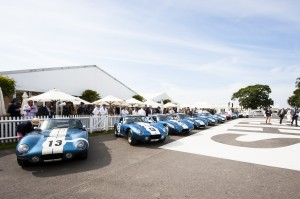 Every original Shelby Daytona Coupe lines up at Goodwood