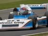 #10 R.Ellingworth - 1978 March 782 - Historic Formula 2